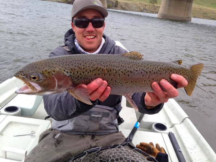 Fishing report chasing the locals hatch missoula on the fly for Missouri trout fishing
