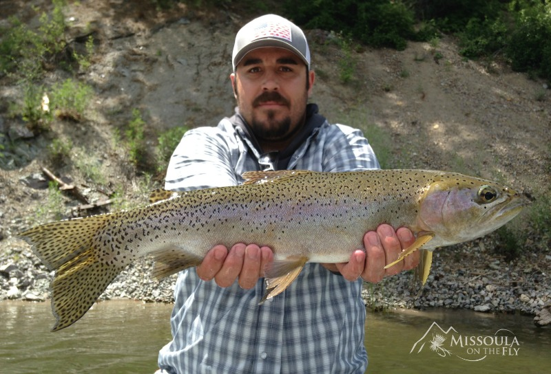 Missoula fishing report spin the bottle missoula on the fly for Missoula montana fly fishing