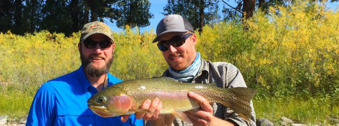 Big fish like the sedge september fly fishing in missoula for Missoula montana fly fishing