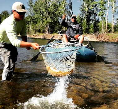 Missoula montana fly fishing guides missoula guide service for Rock creek montana fishing report