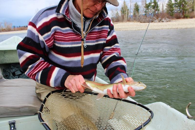 Missoula fishing report 3 30 13 missoula on the fly for Missoula fishing report