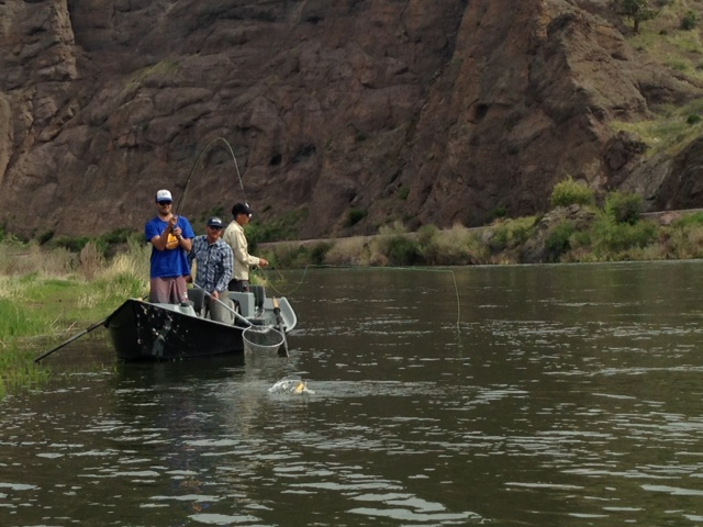 Montana fishing report soup du jour missoula on the fly for Montana fishing report