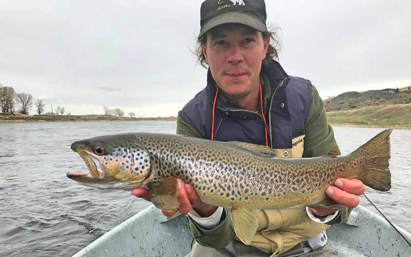 Dialed april fishing report missoula on the fly for Missoula montana fly fishing