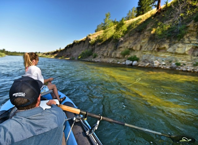 Good dog days of summer missoula on the fly for Missoula montana fly fishing