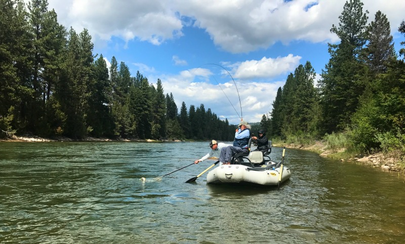 Heat wave coming but ample flows to buffer missoula on for Missoula montana fly fishing